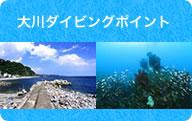 大川ダイビングポイントのご紹介