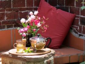 ガーデンカフェ(3)