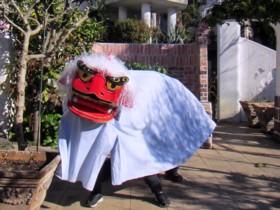 shishi(4)